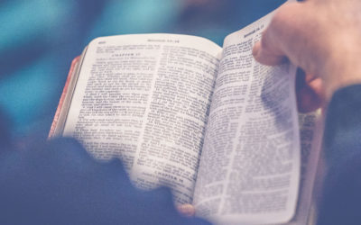 What is Biblical Studies or Literature Degree at Boise Bible College?
